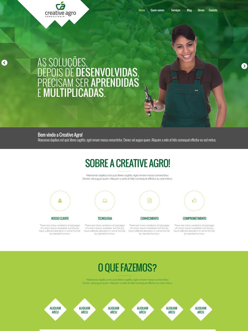 Creativeagro-criacao-site-1